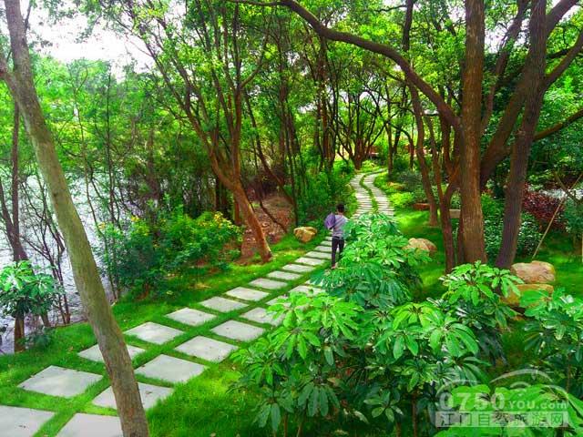 仙游兰石风景区