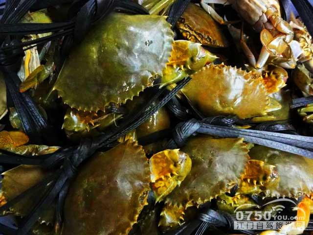 海鲜蟹类名称和图片