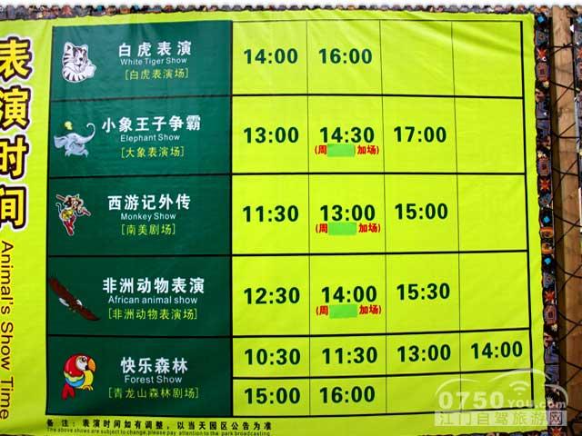 动物世界里的表演节目时间表