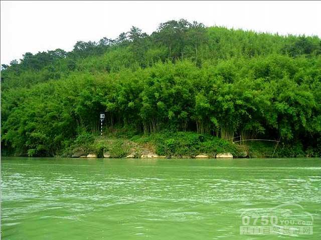 首页 > 景点信息 > 广宁竹海大观  景区实照——相片更新时间为2015年